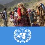 Der Völkermord an den Jesiden und die UN-Völkermordskonvention